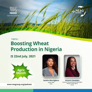 Boosting Wheat Production In Nigeria