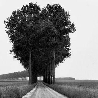 """Annalisa Cittera """"Henri Cartier-Bresson. Landscapes/Paysages"""""""