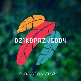 Dzikoprzygody - podcast o naturze