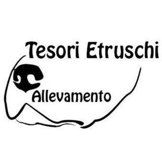INTERVISTA LANFRANCO DURANTI - ALLEVAMENTO TESORI ETRUSCHI