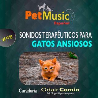 #08 Sons Terapêuticos para Gatos Ansiosos