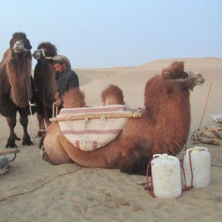 Cina, Xinjiang - Carpe nel deserto I Trekking nel Mondo #05
