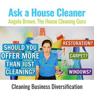 Cleaning Business Diversification - Do You Offer More Than House Cleaning?