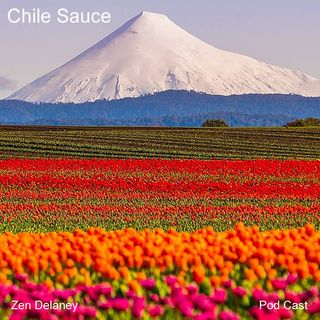 Chile Sauce with Zen Delaney on Lingo Radio Friday 2020-02-21