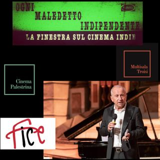 #25 Ogni Maledetto Indipendente - La finestra sul cinema Indie. Domenico Dinoia, Presidente F.I.C.E.