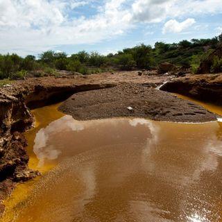 Presidente atenderá derrame en Río Sonora