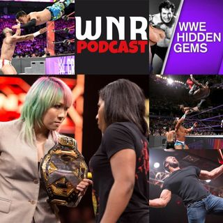 WNR116 WWE Network Review August