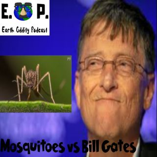 E.O.P. 24: Mosquitoes vs Bill Gates