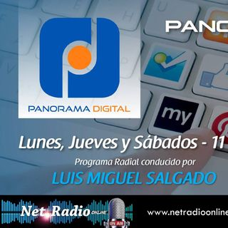 PANORAMA DIGITAL.  (AMOR POR INTERNET). Sabado 27 Mayo 2017.