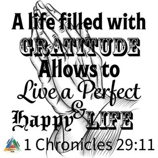 Gratitude change what we feel inside us and change our surroundings