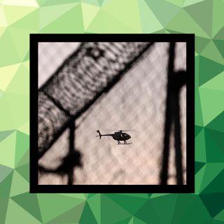 74 - El derecho a fugarse de prisión