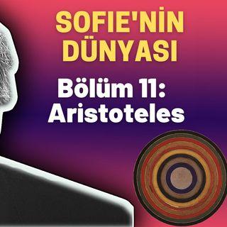 Sesli Kitap - Sofie'nin Dünyası - 11. Bölüm: Aristoteles