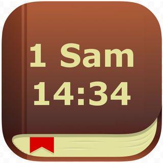 48 - 1 Samuela 14:34