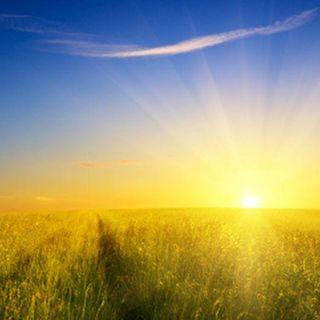 God News - Prophetica