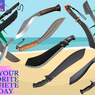 Top 11 Best Machete in 2020 Why they are Worth Buying for You!