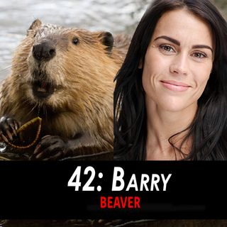 42 - Barry the Beaver