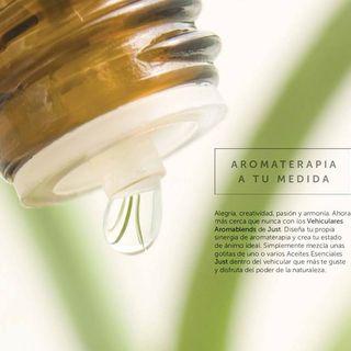 Que es Aromaterapia?
