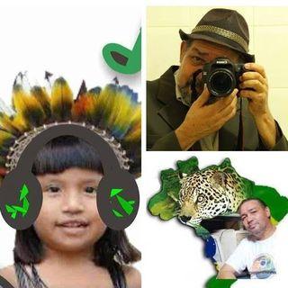 Notícias da Amazônia ao vivo!