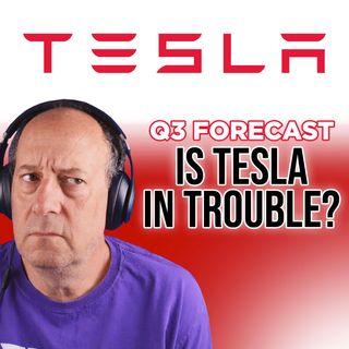 192. Tesla Q3 Forecast: Is Tesla in Trouble? | Warren Redlich