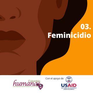 03. Feminicidio