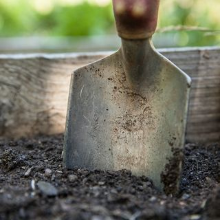 DIY Garden Minute Ep.24 - Effortless Year-Round Soil Improvements!