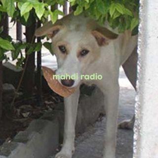 Mahdi Radio Show #อาทิตย์ถอน001