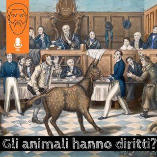 Gli animali hanno diritti? Quattro filosofi per ragionarci insieme