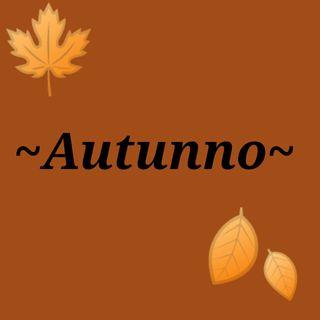 #Torino Le foglie che cadono e le vibes che arrivano!