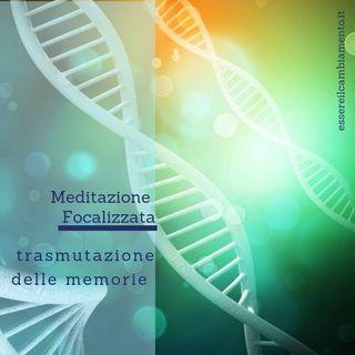 Meditazione focalizzata per la trasmutazione delle memorie