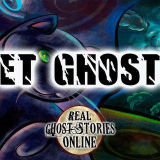 Ghost Pets | Haunted, Paranormal, Supernatural