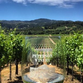Ep 217: Peterson Winery of Dry Creek Valley of Sonoma, CA