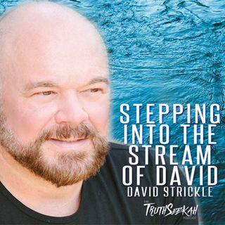 David Strickel | Stepping Into The Stream of David