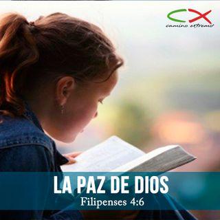 Oración 16 de marzo (La Paz de Dios)