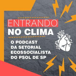 #2: A luta dos guaranis no Jaraguá