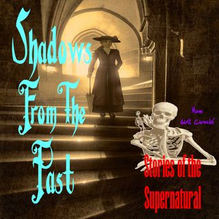 Shadows from the Past | Interview with Anita Jo Intenzo | Podcast