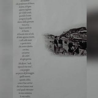 """ORIGINI dal libro """"Fiore di loto"""" Aletti ed. Antonella Pederiva"""