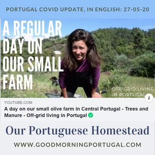 Portugal Covid news & weather update PLUS 'Our Portuguese Homestead'