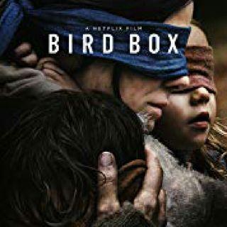 Bird Box & The Messages