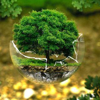 Emergencia simbólica para revertir el cambio climático