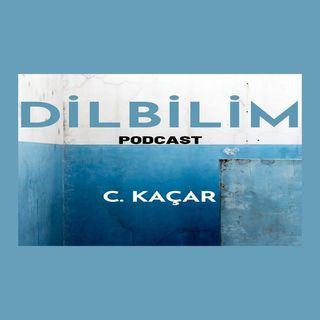 Dil ve Dilin Oluşumu Üzerine   Podcast (Dilbilim) B01