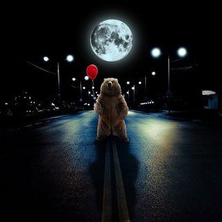 #28 - A Bear on the Moon