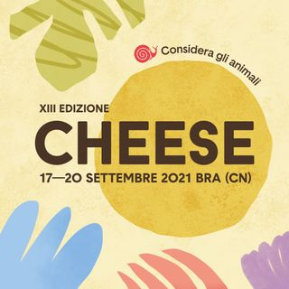 """Alessandra Turco """"Cheese"""""""