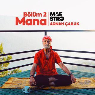 Uyanış 2 #MANA| Adnan Çabuk Siddashram Mistik Öğretiler Yoga Vakfı