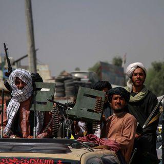 Ultima beffa agli Usa, torna il bodyguard di Bin Laden