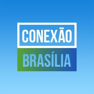Bolsonaro X Haddad: o que esperar do Brasil depois das eleições?