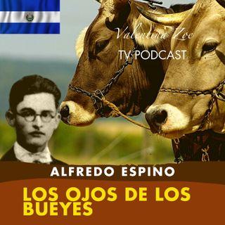 LOS OJOS DE LOS BUEYES ALFREDO ESPINO🐂👀 | Poema Los Ojos de Los Bueyes Alfredo Espino Valentina Zoe