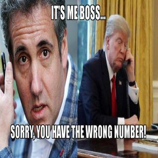 Michael Cohen and Trump sank Trump!