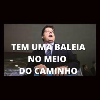 Impeachment de Bolsonaro não sai. Tem uma Baleia no meio do caminho