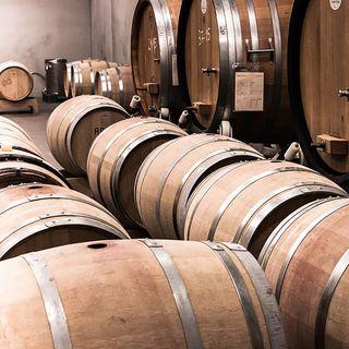 Scopriamo il significato dei disciplinari del vino