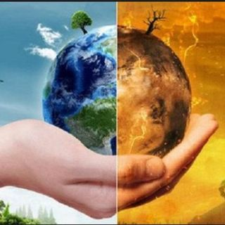 #medio ambiente